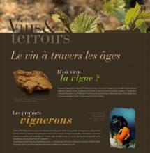 Vins et terroirs