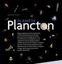 Au cœur du plancton