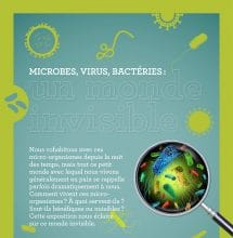 Microbes, virus, bactéries : un monde invisible