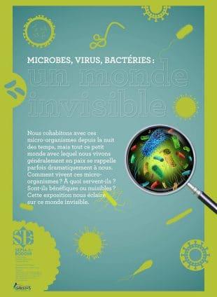Microbes, virus, bactéries : un monde invisible